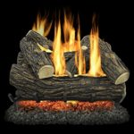 Pleasant Hearth VL-WO24D Willow Oak Vented Gas Log Set, 55000 BTU, 24″ image
