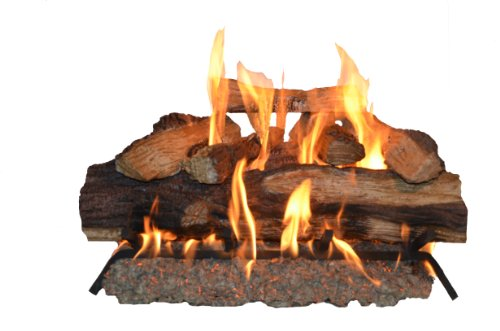 Sure Heat SH24DBNG Sure Heat Seasoned Hickory Dual Burner Vented Gas Log Set, 24-Inch, Natural Gas